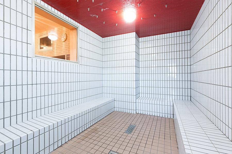 mist_sauna.jpg