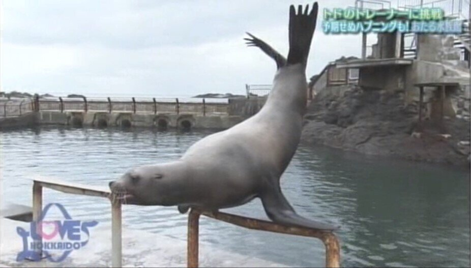 norito_sakadachi.jpg