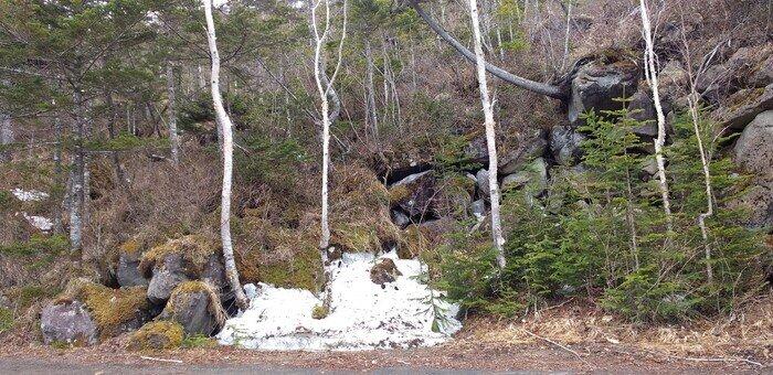 扇が原展望台の雪.jpg