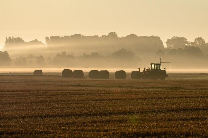 画像5 179 朝靄の大地.jpg