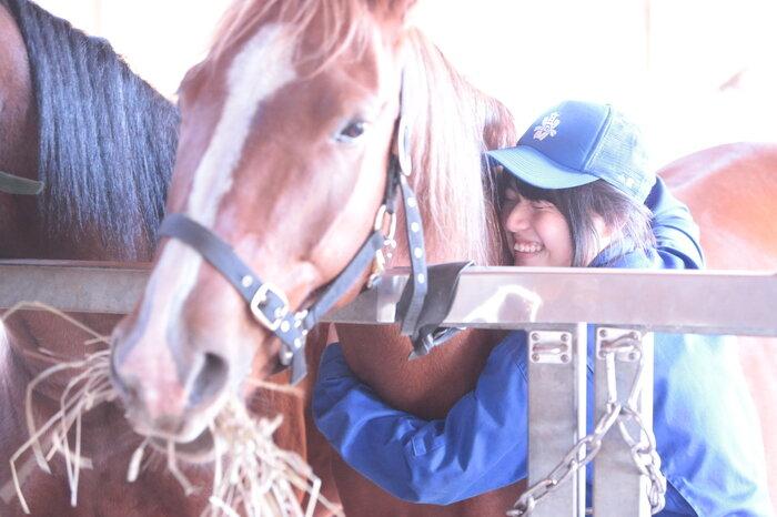 画像7 186 やっぱり馬が好き!.JPG