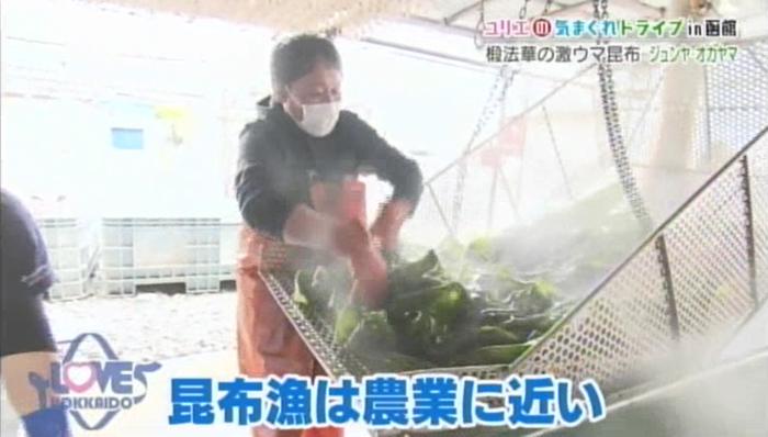 昆布漁は農業に近い.png