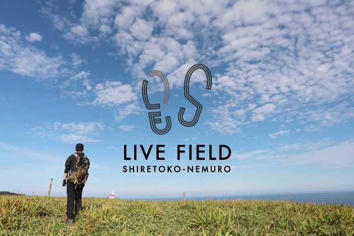 livefield-001.jpg